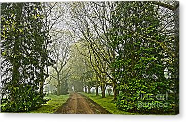 Road To The Manor House Canvas Print