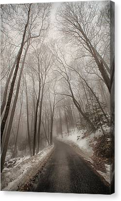 Road To Winter Canvas Print by Karol Livote