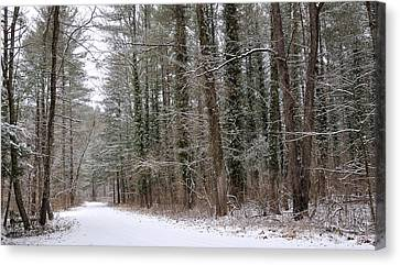 Road To Winter Canvas Print by Todd Hostetter