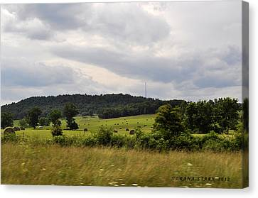 Canvas Print featuring the photograph Road Trip 2012 by Verana Stark