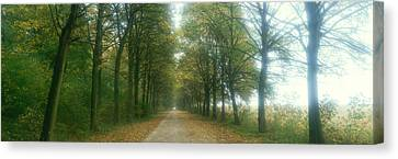 Road With Fog, France Canvas Print