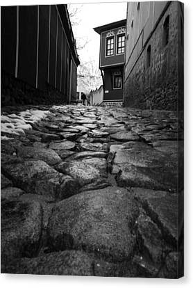 Roads Canvas Print by Lucy D