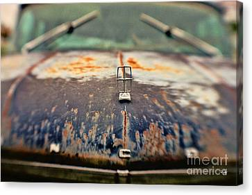Roadside Relic Canvas Print by Scott Pellegrin