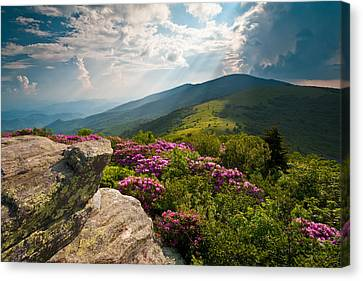 Roan Mountain From Appalachian Trail Near Jane's Bald Canvas Print by Dave Allen