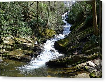 Roaring Fork Falls - Spring 2013 Canvas Print by Joel Deutsch