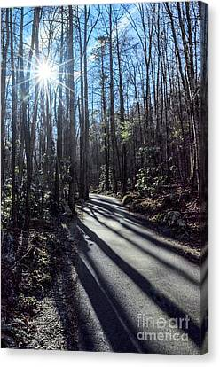Roaring Fork Road Canvas Print by Debbie Green