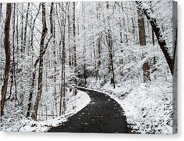 Roaring Fork Snowy Road Canvas Print by Debbie Green