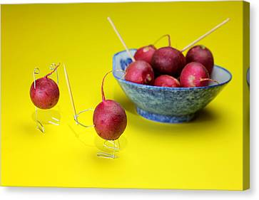 Robbing Red Radishes Canvas Print by Paul Ge