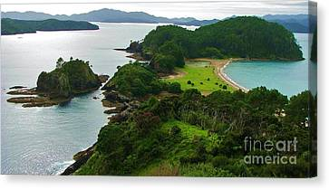 Roberton Island Canvas Print by Michele Penner