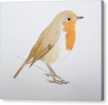 Robin Canvas Print by Ele Grafton