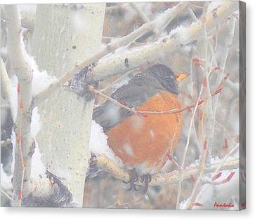 Robin In April Snow Canvas Print