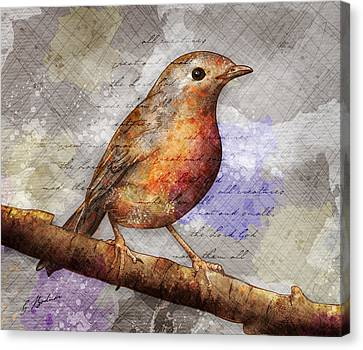Robin On Branch Canvas Print