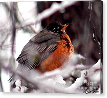 Canvas Print featuring the photograph Robins' Patience by Lesa Fine