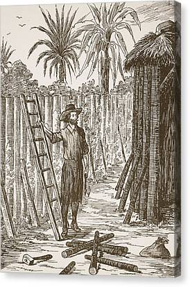 Robinson Crusoe Building His Bower Canvas Print by English School