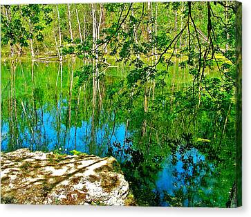 Near Natchez Trace Parkway Canvas Print - Rock And Spring On Rock Spring Trail Near Natchez Trace Parkway-alabama  by Ruth Hager