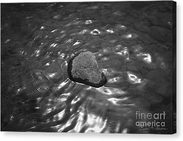 Rock And Sun Reflections Canvas Print by Dave Gordon