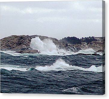 Rock Bound Coast Canvas Print