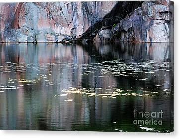 Rock Cliff And Reflections Canvas Print by Charline Xia