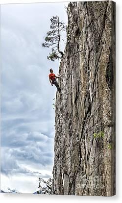 Rock Climber Canvas Print by Carsten Reisinger