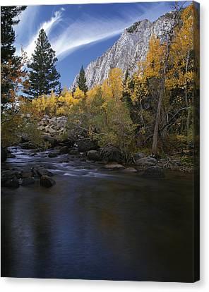 Rock Creek Canyon Gold Canvas Print