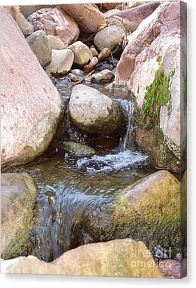 Canvas Print featuring the photograph Rock Creek by Kerri Mortenson