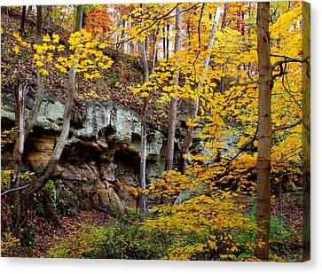 Rock Fall Gorge Canvas Print