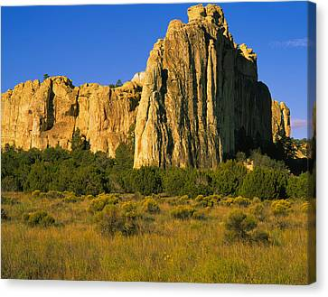 Rock On A Landscape, Inscription Rock Canvas Print by Panoramic Images