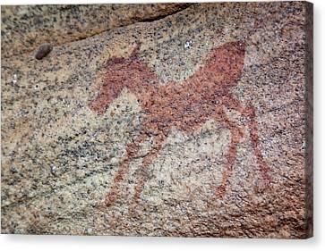 Rock Painting Of Zebra Foal, Sevilla Canvas Print by Jaynes Gallery