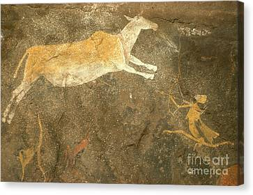 Rock Painting, South Africa Canvas Print by Daniele Pellegrini