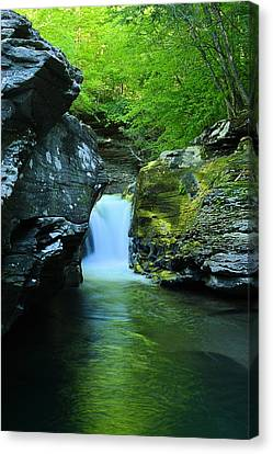 Rock Run Cataracts #1 Canvas Print