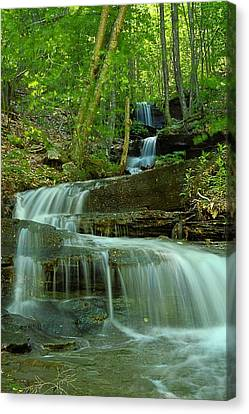 Rock Run Tributary Falls #1 Canvas Print