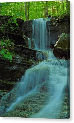 Rock Run Tributary Falls #3 Canvas Print