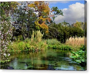Rock Springs Canvas Print by Bob Jackson