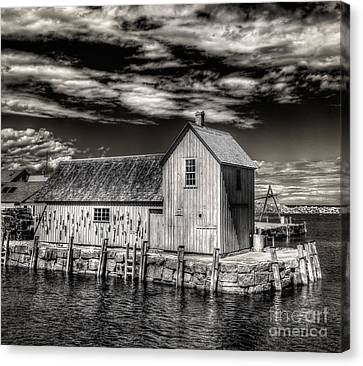 Canvas Print featuring the photograph Rockport Harbor by Steve Zimic