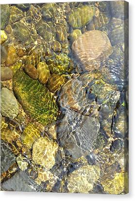 Rocks And Pebbles 3 Canvas Print by David Stribbling