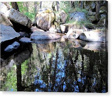 Rocks And Reflections Canvas Print by Chris Gudger