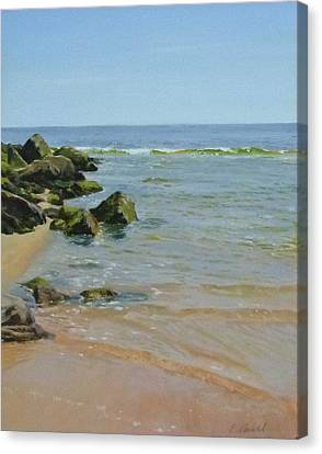 Rocks And Shallows Canvas Print