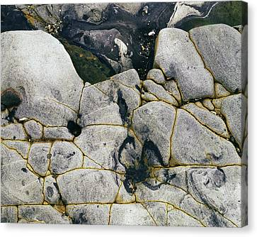 Rocks At Point Lobos C2014 Canvas Print