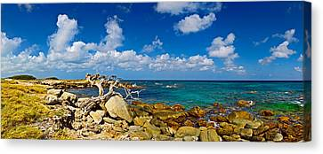 Rocks At The Coast, Aruba Canvas Print by Panoramic Images