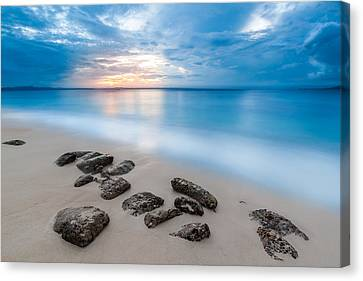 Rocks By The Sea Canvas Print by Mihai Andritoiu