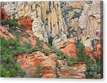 Rocks Of Sedona Canvas Print by Carol Groenen