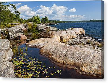Rocks On Georgian Bay Shore Canvas Print by Elena Elisseeva