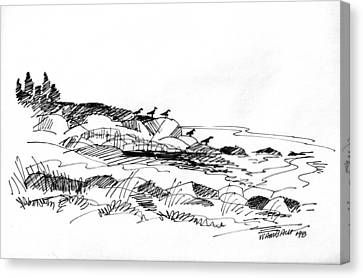 Rocky Beach Monhegan 1998 Canvas Print by Richard Wambach