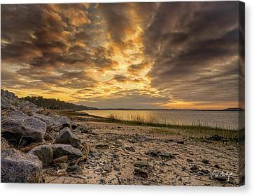Rocky Beach Canvas Print by Phill Doherty