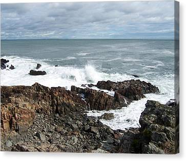 Rocky Coast Canvas Print by Catherine Gagne