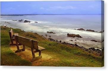 Rocky Forster 0007 Canvas Print