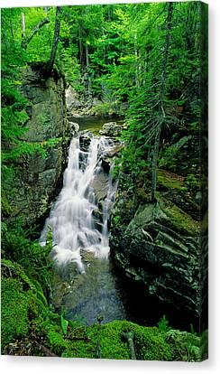 Rocky Glen Falls Canvas Print by Michael Hubley