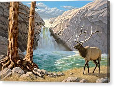 Rocky Mountain Elk Canvas Print by Paul Krapf