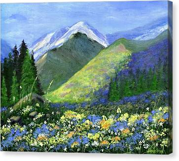 Rocky Mountain Spring Canvas Print by Jamie Frier