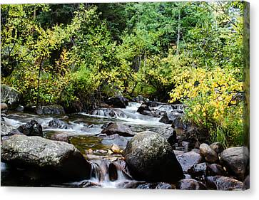 Canvas Print featuring the photograph Rocky Mountain Stream by Jay Stockhaus